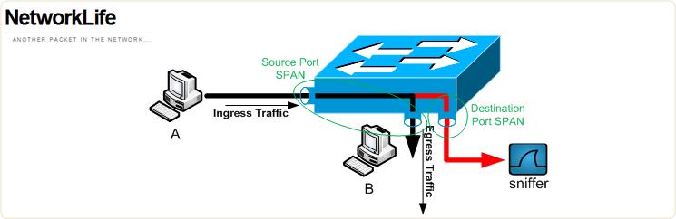 span-terminology